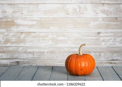 Pumpkin on wooden wall background. Halloween and autumn food concept