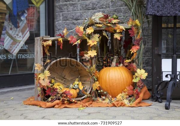 pumpkin outdoor