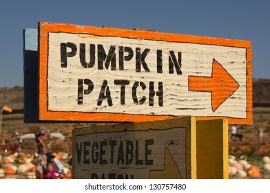 Pumpkin patch sign with arrow leading to pumpkins