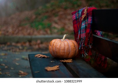 Pumpkin and plaid blanket on a bench in  Autumn park