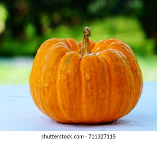 Pumpkin is a raw material for the Halloween day