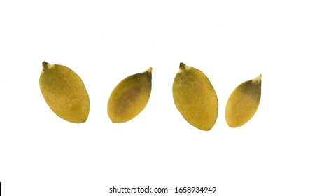 pumpkin seeds isolated on white background, cutout