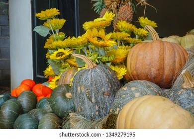 Pumpkin with Sun Flower