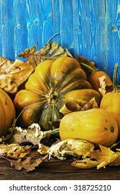 Pumpkins and animal bones
