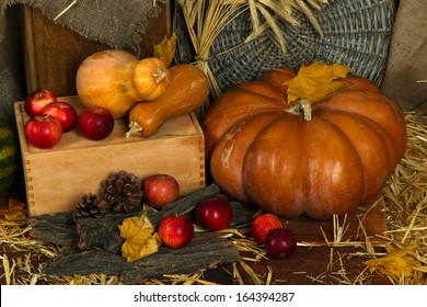 Pumpkins and apples on crate on straw close up