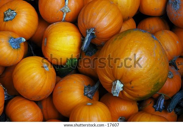 Pumpkins of assorted sizes