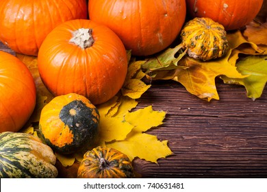 Pumpkins with atumn colorful leaves