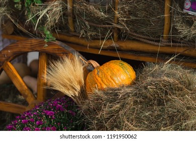 Pumpkins. Autumn Festival in the city. Moscow, September 2018