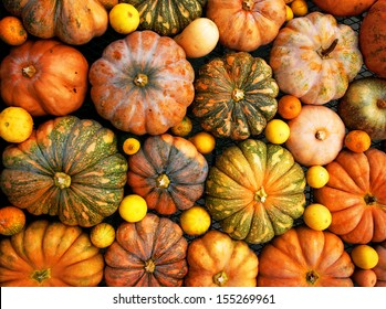 pumpkins, autumnal harvest, small pumpkin, texture or autumn background