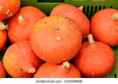 pumpkins bunch on sale at Saturday market, shot in bright cloudy light at Ludwigsburg, Germany