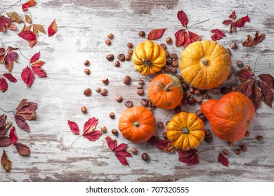 Pumpkins chestnuts and hazelnuts overhead colorful group with red leaves on old white rustic wooden table in studio