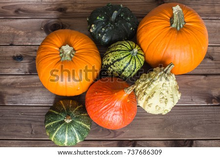 Pumpkins Different Typesgood Eat Decorative Place Stock Photo Edit