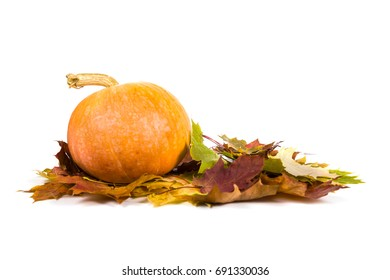 Pumpkins and fall leaves isolated on white background