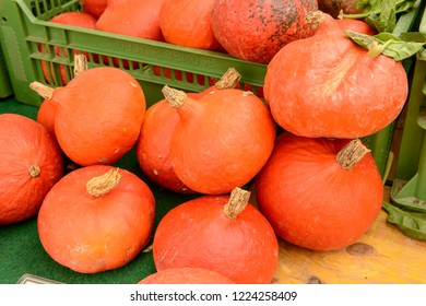 pumpkins heap on sale at Saturday market, shot in bright cloudy light at Ludwigsburg, Germany