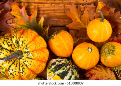 Pumpkins with multicolor autumn leaves