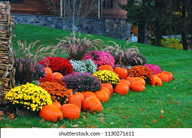 Pumpkins, mums and corn stalks create a delightful autumn display in New England