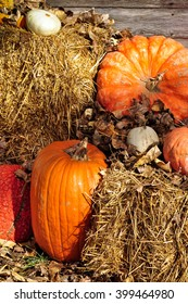 Pumpkins on hay bales at harvest time