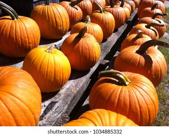 pumpkins on a stand