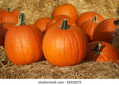 Pumpkins on straw in fall