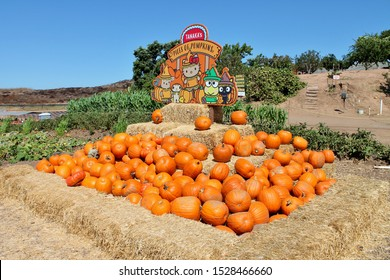 Pumpkins piled on bales of hay on a sunny autumn day at Tanaka Farms in California