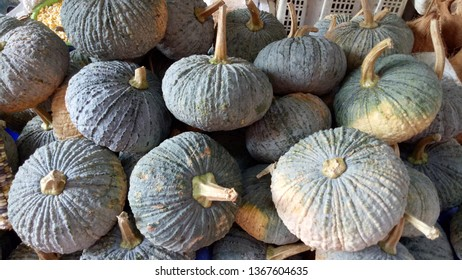Pumpkins sold in the fresh market