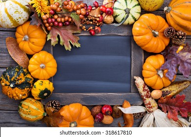 Pumpkins and variety of squash around a chalkboard