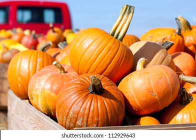 Pumpkins in the wooden box preparing for sale