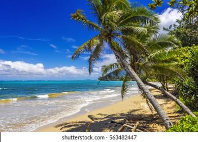 Punaluu Beach on Oahu Island, Hawaii, USA