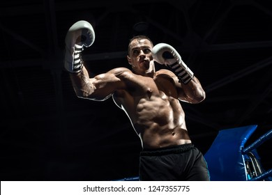 punching boxer on boxing ring, black bacground, horizontal photo
