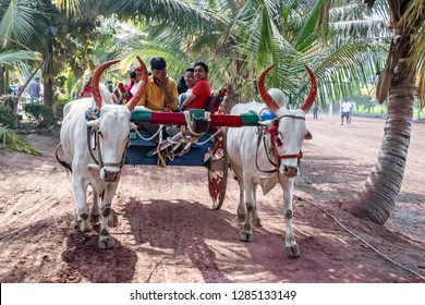 Pune, India - January 13 2019: People riding a bullock cart at a village near Pune India.