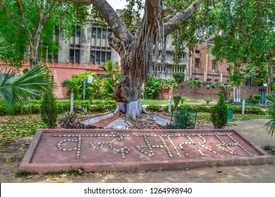 Punjab: May 2018: Beautiful view of Jallianwala Bagh. It's one of the famous spots to visit in Amritsar. (Punjab- India)