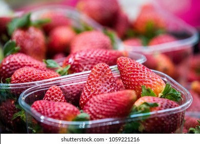 Punnet of strawberries in plastic containers for sale at a local market