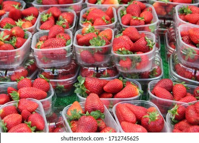 Punnets of fresh juicy strawberries