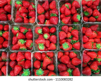 Punnets of Ripe Strawberries, background