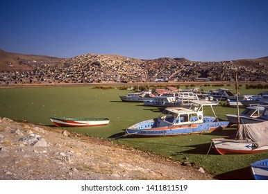 PUNO, PERU - CIRCA AUG 1994 : colorful boats are anchored in the waters of Lake Titicaca in the Puno bay completely covered by green algae, in Peru circa August 1994.