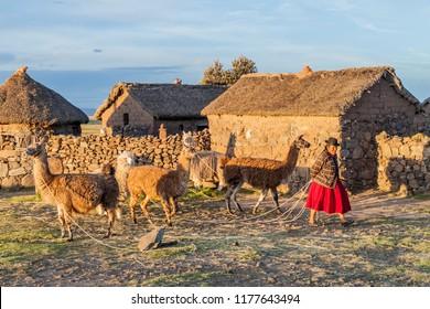 PUNO, PERU - MAY 14, 2015: Small settlement near Puno, Peru. Old women with lamas present.