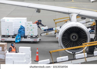 Punta Arenas, Chile - 21 October 2017: Airport workers loading styrofoam containers of frozen Chilean sea bass into the hold of an airliner