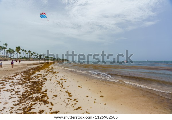 Punta Cana Dominican Republic June 24 Stock Photo (Edit Now