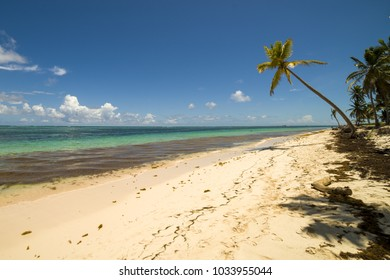 PUNTA CANA, DOMINICAN REPUBLIC - Nov. 10, 2017 A view of the beach in Punta Cana with a palm on the right handside