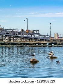 PUNTA DEL ESTE, URUGUAY, OCTOBER - 2018 - Winter day scene at port in punta del este city, Uruguay
