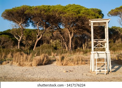 Puntone Scarlino, Maremma Tuscany, Italy - circa April 2019 - Watch tower on the typical Pineta trees area near the beach