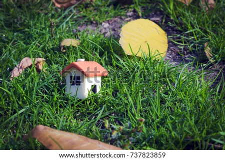 Puppet House On Green Grass Next Stock Photo (Edit Now) 737823859