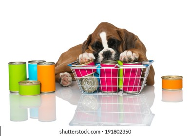Puppy with canned food isolated on white