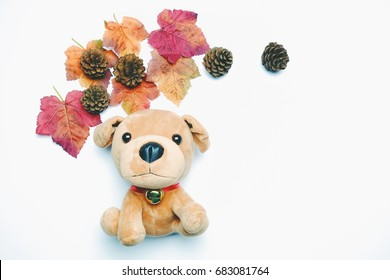 A puppy dog with pine cones and colorful maple leaves in autumn. Top view with copy space. Flat lay.