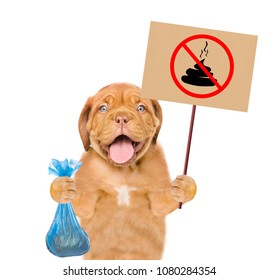 "puppy holds plastic bag and sign ""no dog poop"". Concept cleaning up dog droppings. isolated on white background"