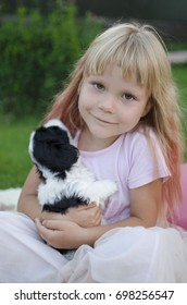 Puppy shih tzu. Black and white puppy on girl's hands. Little girl hugs little puppy. Cute blond girl hugs her pet.