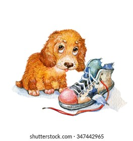 puppy shoes watercolors