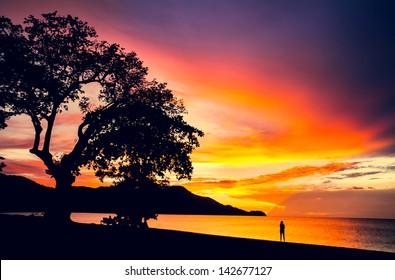 Pura Vida. Sunset in Coco beach, Guanacaste, Costa Rica, Central America. Travel Concept