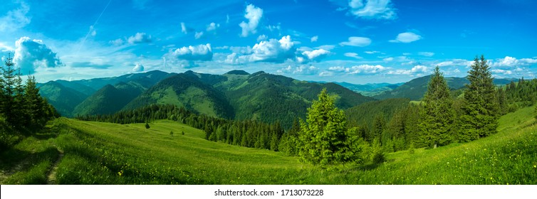 Pure clean air of alpine meadow beautiful panorama. Carpathian mountains - Shutterstock ID 1713073228