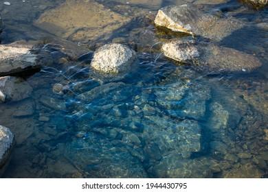Pure clean river water flowing in between the rocks.